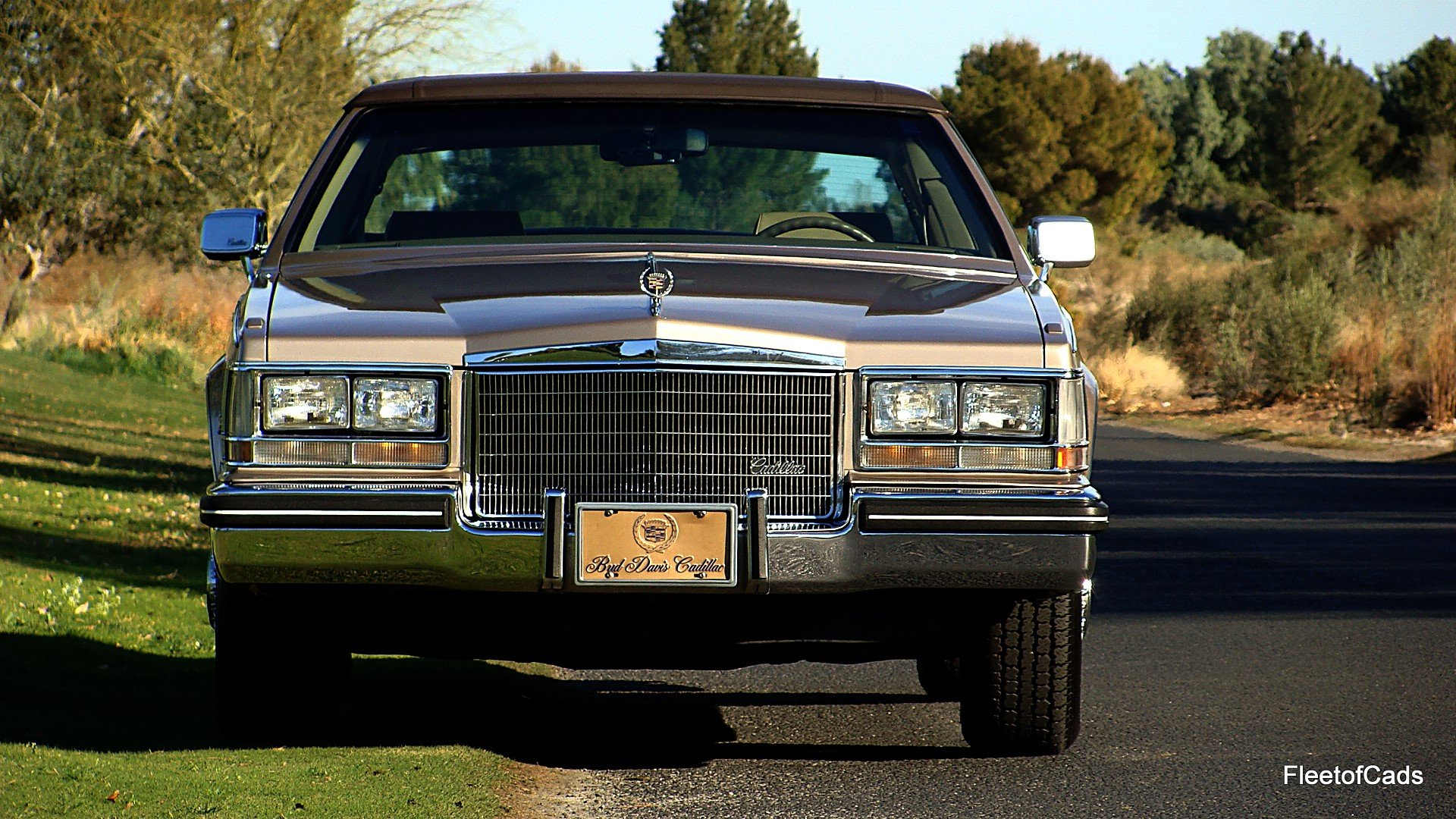 1985 cadillac seville with low 28k miles collector owned no reserve